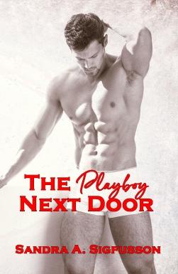 the playboy next door.jpg